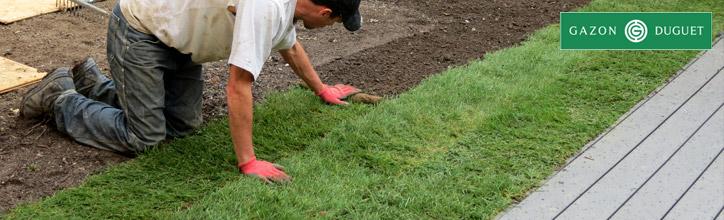 Pose du gazon en rouleau et de la pelouse en plaque for Pose de gazon en rouleau