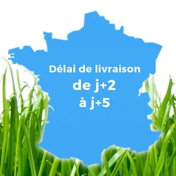 Délais J+2 à J+5 France métropolitaine et IDF