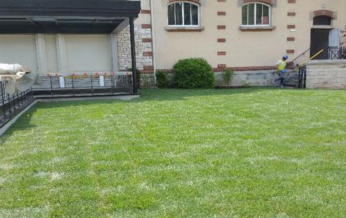 Pose de pelouse chez un particulier à Tremblay en France